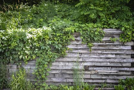 wood railroad: Retaining wall made of railroad ties