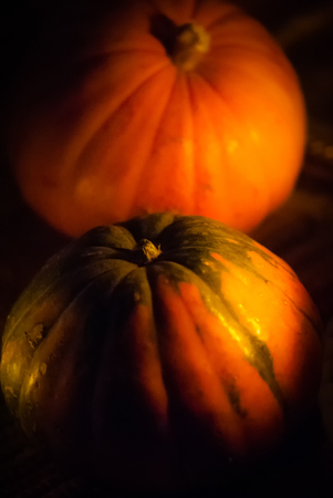 Two decorative orange squash Stock Photo
