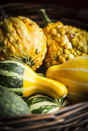 Assortment of decorative gourds in a basket