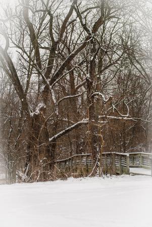 The footbridge in winter snow Stock Photo