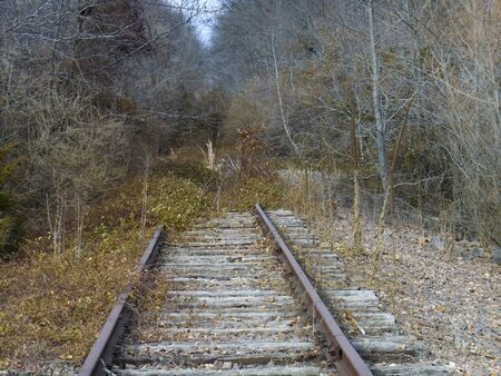 Abandoned railroad tracks in the woods