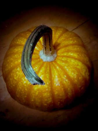 Halloween pumpkin with a long stem