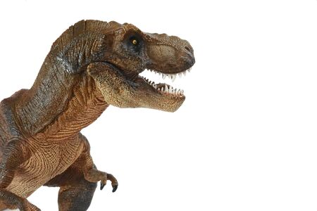 Brown tyrannosaurus rex (t-rex, coelurosaurian theropod dinosaur) didactic figure with open mouth showing sharp teeth, full body and short arms, placed on the left on a white background.