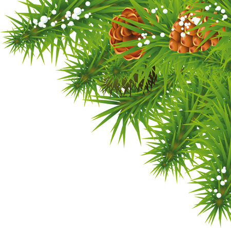 Christmas tree branches with cones isolated on white background. Christmas and New Year Stock Photo