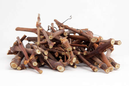 small cut branches, ready to be used in a fire Stock Photo - 13640804