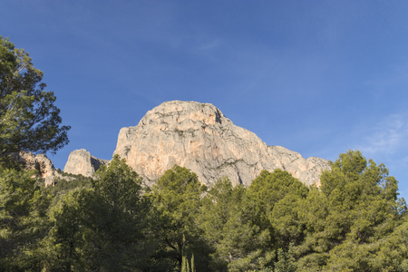 Rocky mountain with the sky in the background and the close-up of pine trees. Banque d'images - 120359242