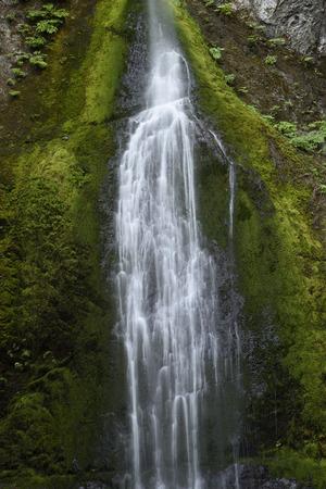 Marymere Falls, Olympic National Park, Washington