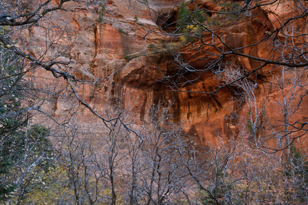 The North Face of Beatty Point, Zion National Park, Utah 写真素材 - 107914743