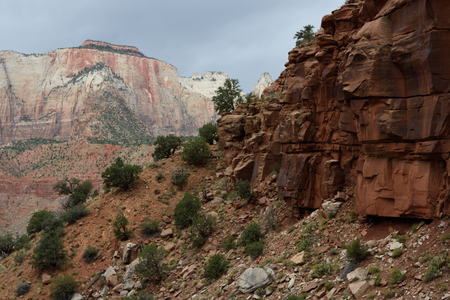 The West Temple from the Watchman Trail, Zion National Park, Utah