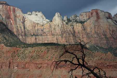 Towers and Temples of the Virgin from Watchman Trail, Zion National Park, Utah, Zion National Park, Utah
