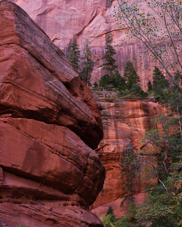 Hiking the Finger Canyons of the Kolob, Zion National Park, Utah 写真素材 - 107914907