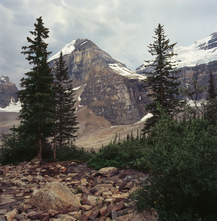 Mount Lefroy from the Plain of Six Glaciers Trail, Banff National Park, Alberta