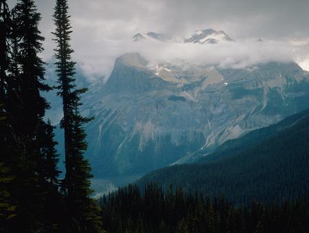 Burgess Pass and the President Range, Yoho National Park, British Columbia Stock Photo