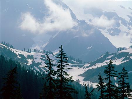 Along the Lake Ann Trail, North Cascades National Park, Washington
