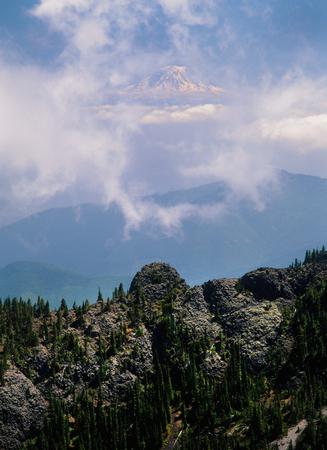 Mount Rainier from the Buckhorn Wilderness, Olympic National Park, Washington
