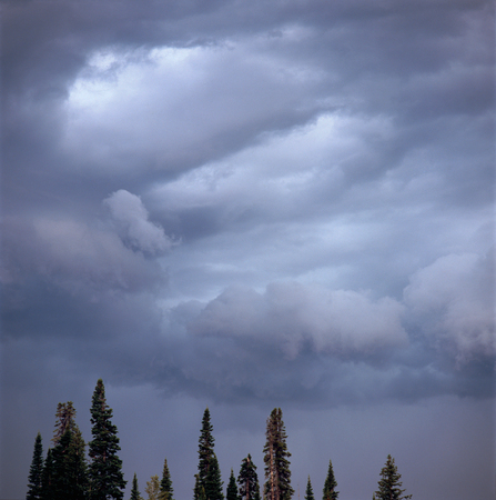 Storm sky in Ricks Basin, Caribou-Targhee National Forest, Wyoming Фото со стока