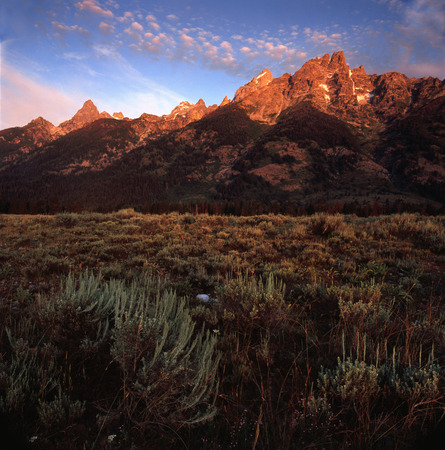 The east face of the Teton Range at dawn, Grand Teton National Park, Wyoming