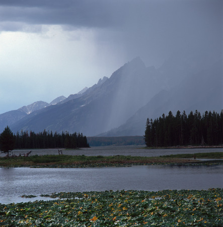 Downpour over the Tetons from Heron Pond, Grand Teton National Park, Wyoming