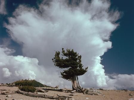 Clouds above Mammoth Crest in the John Muir Wilderness, Sierra Nevada Range, California Фото со стока