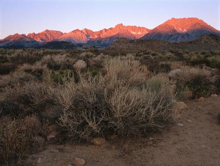 Sunrise in Owens Valley, eastern Sierra Nevada, California