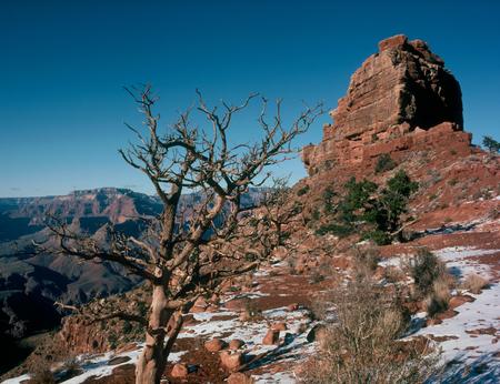 ONeill Butte from the Cedar Ridge Trail, Grand Canyon National Park, Arizona