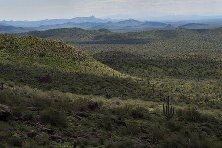 Valley below the Hieroglyphic Trail, Superstition Mountains, Arizona
