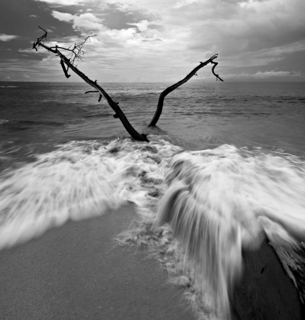 black and white fine art landscape with waves motion photo