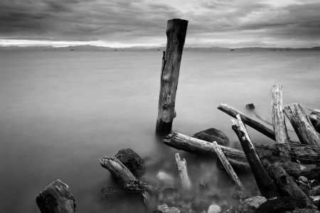 Ruins of wooden pillars at shore. Borneo, Sabah, Malaysia photo