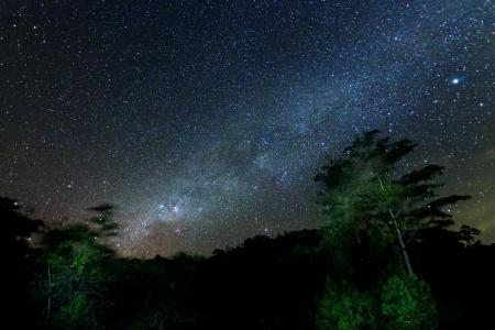 sterrenhemel: Melkweg op Borneo, Sabah, Maleisië