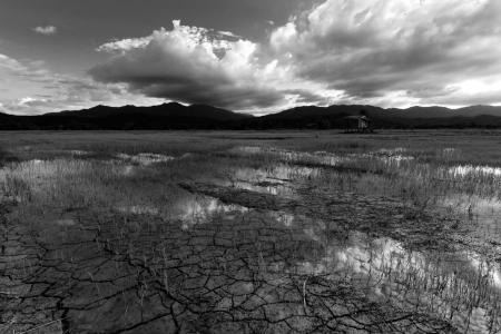 Black and white landscape taken in Borneo, Sabah, Malaysia photo