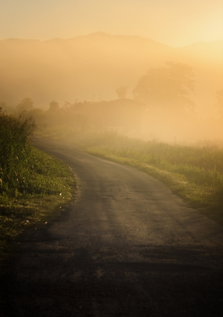 Misty road photo