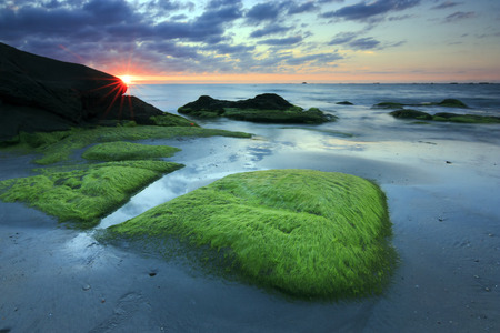 Rocks with green moss at sunset in Sabah, Borneo, Malaysia photo