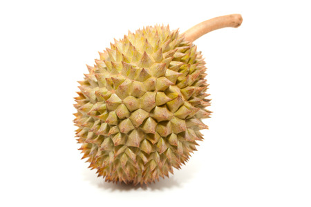 Asian tropical fruit known as Durian, over white background photo