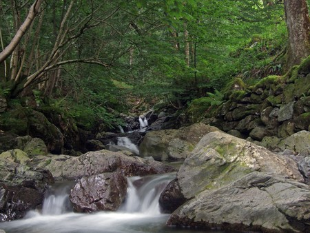 thou: water cascading thou rocks and boulders creating white water