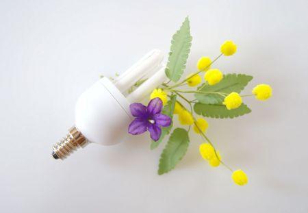 bulb power Stock Photo - 6575608