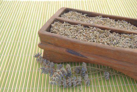 provencal: Lavender Provencal