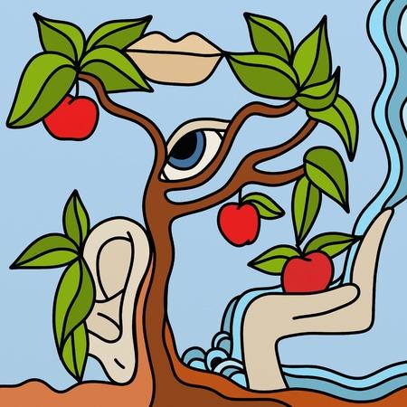 apples Stock Photo - 9304104