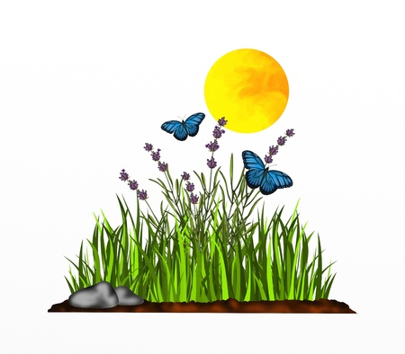 background with lavender and blue butterflies photo