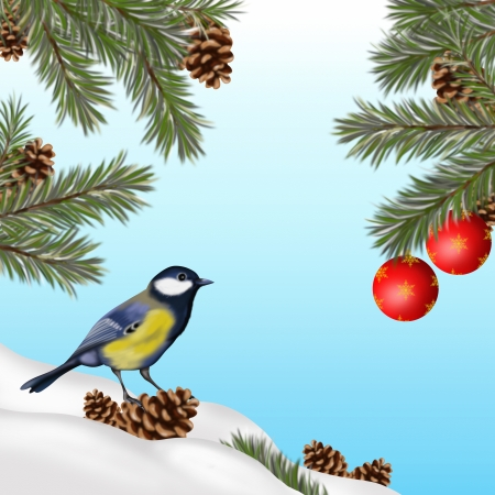 Christmas illustration with blue tit illustration