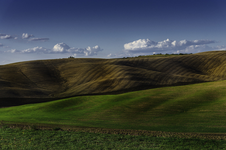 sinuous: Soft and sinuous hills in a corner of Tuscany