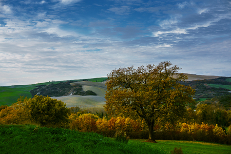 emerge: autumn colors emerge from the Tuscan hills