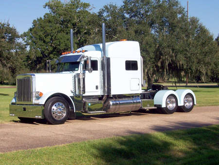 A white 18 wheeler with cypress trees in the background.