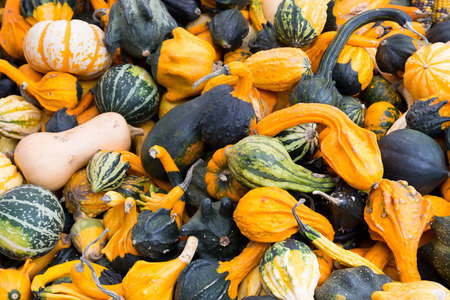 Gourds at a market stall photo