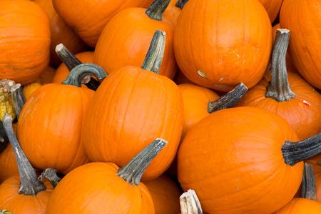 market stall: Pumpkins at a market stall