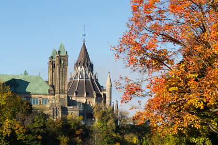Part of the Ottawa Parliament buildings with a Canadian Maple Tree in the foreground photo
