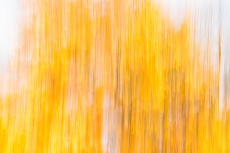 streaky: A full frame streaky yellow texture