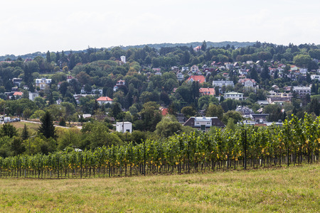 outskirts: VIENNA, AUSTRIA - 21ST AUGUST 2015: A view of part of a Plantation and Buildings in the outskirts of Vienna during the day. Editorial