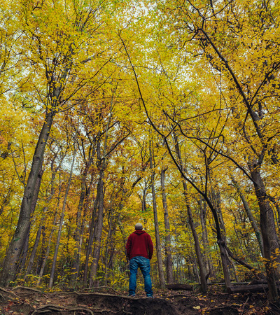 oudoors: A man outside during the autumn months in Austria exploring the colourful woods Stock Photo