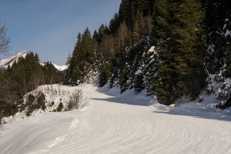 ski runs: Tree runs at a ski resort in the winter. Fresh snow and piste can be seen. Stock Photo