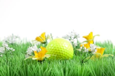 golf ball on green gras Stok Fotoğraf